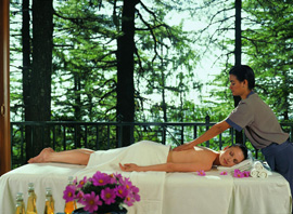 Spa - Vacations in India