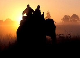 Kanha National Park - Wildlife Holiday in India